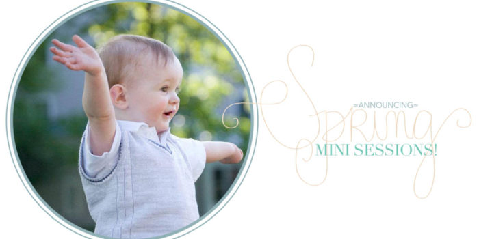 Spring Mini Sessions in Newton and Wellesley!