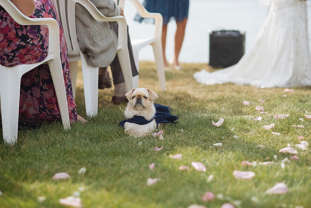 Cape Cod Buzzards Bay Wedding by Stephanie Rita Photo_0028
