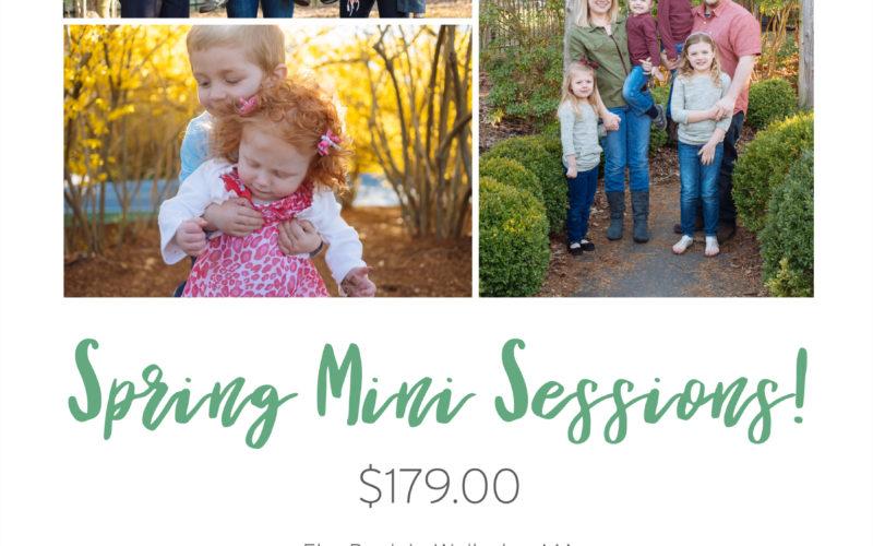 2017 Spring Mini Sessions
